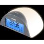 Alarmklok met dwaaldetector | FC-38