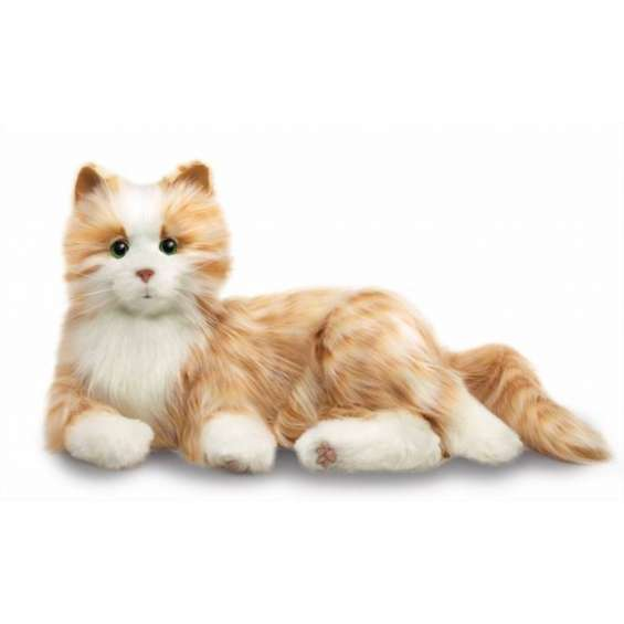 Interactieve kat voor ouderen en dementerenden